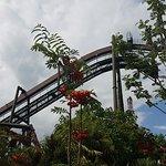 صورة فوتوغرافية لـ حديقة ثورب بارك