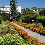 Photo of The Botanical Garden of the Jagiellonian University