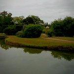 IMG_20160821_173432_284_large.jpg