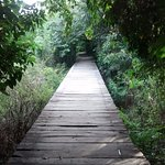 Foto de Laguna Charco Verde