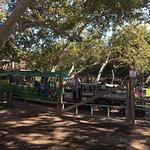 Photo of Irvine Regional Park