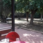 Photo de Hotel Los Olivos