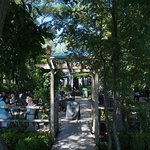 Casual - ample outdoor seating under the trees with views of Lake Ontario