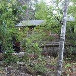 The Ponderosa Cabin