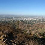 Hollywood Sign Foto