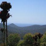 Port Stephens Hills