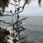 Punta Brava Picture