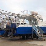 White Shark Diving Company Foto
