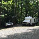 our corner campsite #310