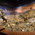 Foto de Blackhawk Museum