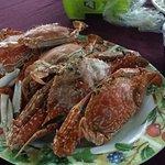 Superb Fresh Crab