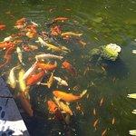 Photo de Miami Beach Botanical Garden
