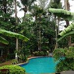Foto de The Viridian Resort