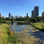 Lincoln Park Foto