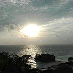 Photo of Argonauta Boracay