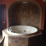 Jacuzzi tub in Living area!
