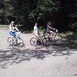Selection of bikes to choose from, free map of the forest showing main cycle paths.
