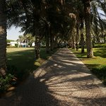 Foto di Coral Beach Resort Sharjah