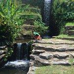 Foto de Hodges Gardens