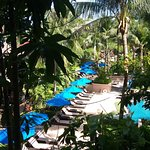 Foto de Novotel Phuket Kata Avista Resort and Spa