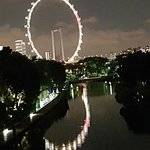 Singapore Flyer Foto