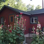 The Kingfisher Cabin