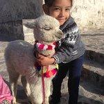 Foto de Rap Travel Peru