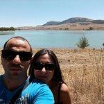 La pineta sul lago