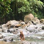 Photo de La Fortuna Waterfall