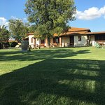 Photo of Agriturismo Al Girasole