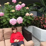 The couch area in the hotel courtyard with the beautiful flowers.