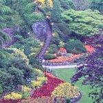 Photo de Butchart Gardens