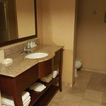 Foto de Hampton Inn & Suites Omaha Southwest/La Vista
