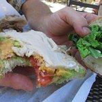 Not the greatest sandwich - Turkey Avocado Bacon with a slice of turkey, orange cheddar
