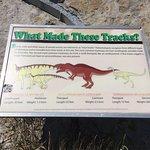 Dinosaur Ridge Foto