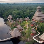 Ecuador's Yasuni National Park