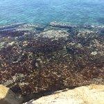 Secrets St. James Montego Bay Foto