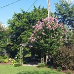 Lavender Heights Bed and Breakfast Photo