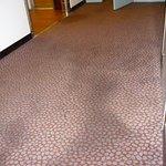 Corridor carpet.