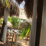 Photo de Mr Sanchos Beach Club Cozumel