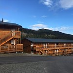 Grizzly Bear Cedar Hotel