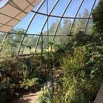 Foto di Botanical Garden (Botanischer Garten)