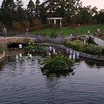 Como Park Zoo & Conservatory Foto
