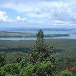 Rangitoto Island Foto