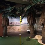 Palm Springs putting green in Natural History Gallery