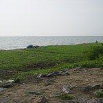 Alleppey Beach Resorts Foto