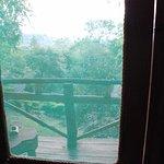 Vista desde la habitación con mosquitera en la puerta