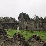 Malahide Castle Co. Dublin Foto