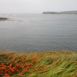 Photo of Kilkee Bay Hotel