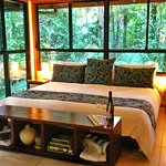 Bedroom surrounded by rainforest.